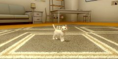 With My Cat is an upcoming pet sim for mobile devices arriving next week