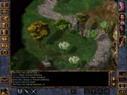 Baldur's Gate: Enhanced Edition makes it onto the App Store